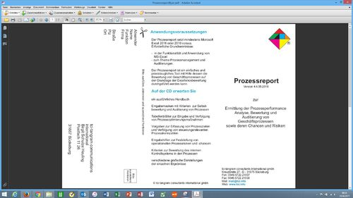 Flyer Prozessreport