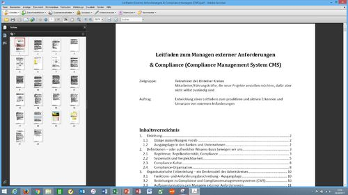 Leitfaden Compliance Management System